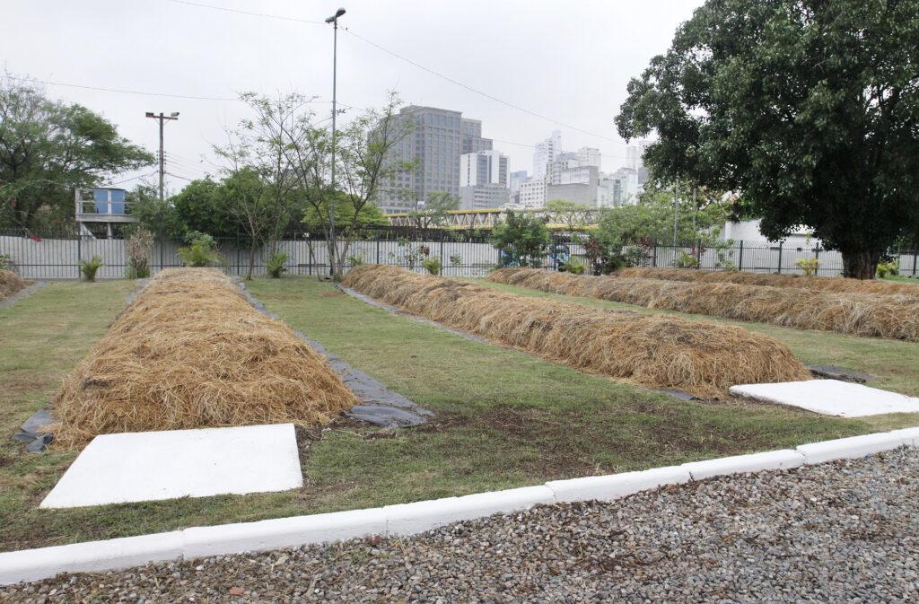 compostagem-de-resíduos-orgânicos-em-sp- pl-aprova-medida